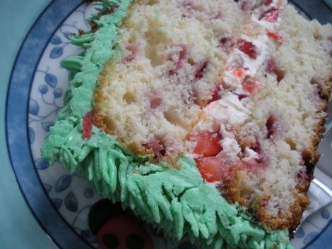 ladybug_cake_1.jpg