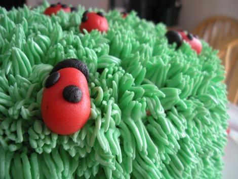 ladybug_cake_3.jpg