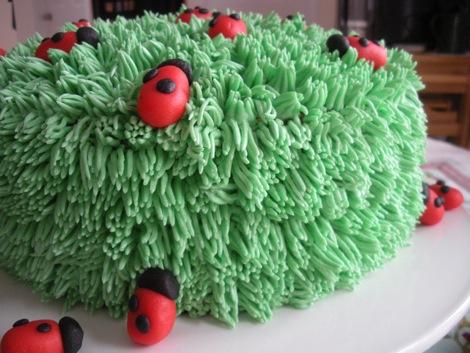 ladybug_cake_4.jpg