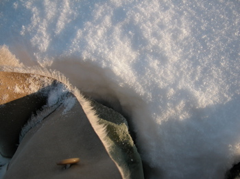 winter08.jpg
